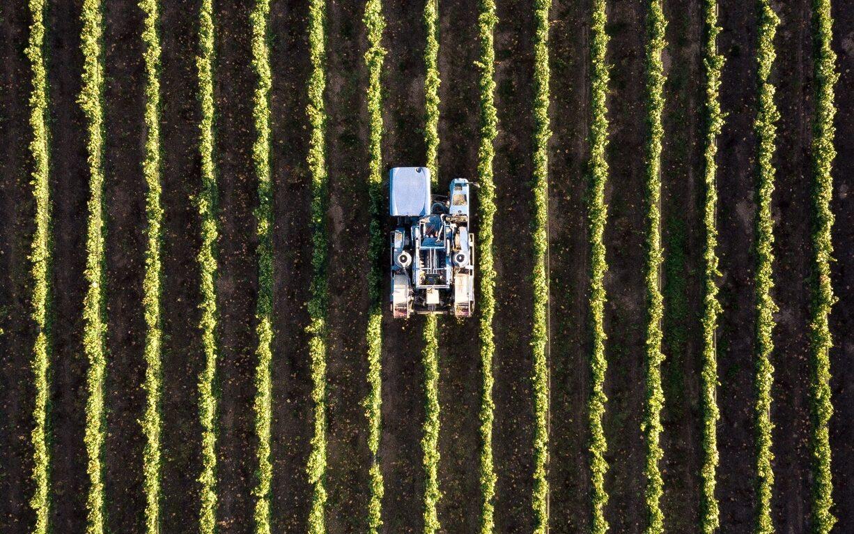 Arbeitsausbeutung in der österreichischen Landwirtschaft